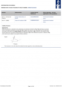 Konsileo Insurance NPL Schedule 2020 Page 2